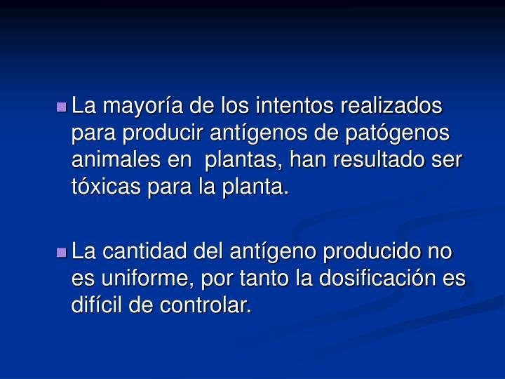 La mayoría de los intentos realizados para producir antígenos de patógenos animales en  plantas, han resultado ser tóxicas para la planta.