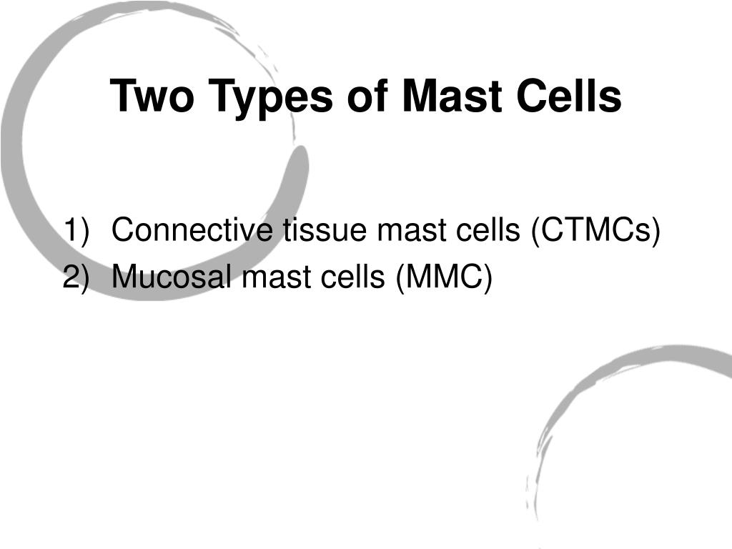 Two Types of Mast Cells