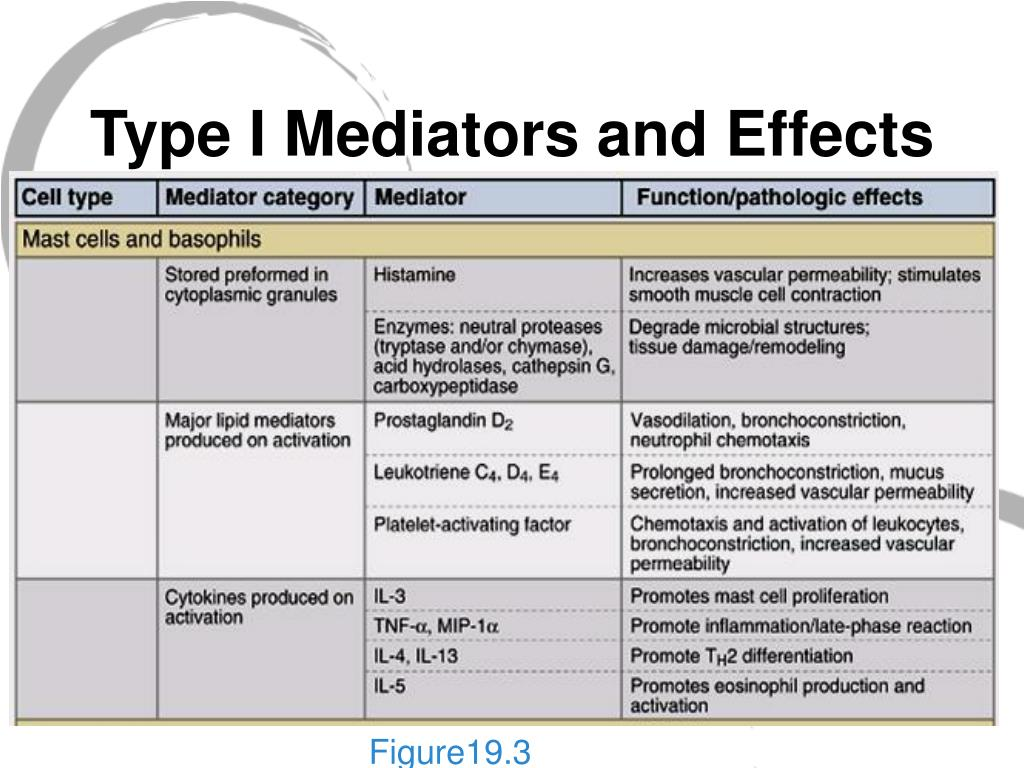 Type I Mediators and Effects
