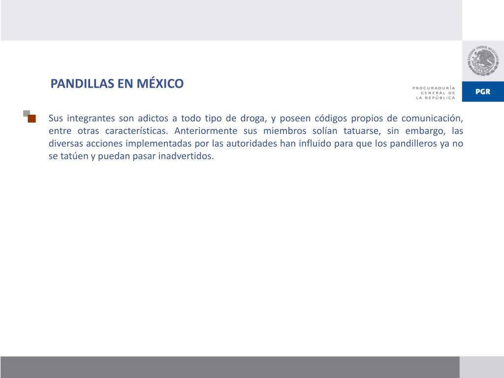 PANDILLAS EN MÉXICO
