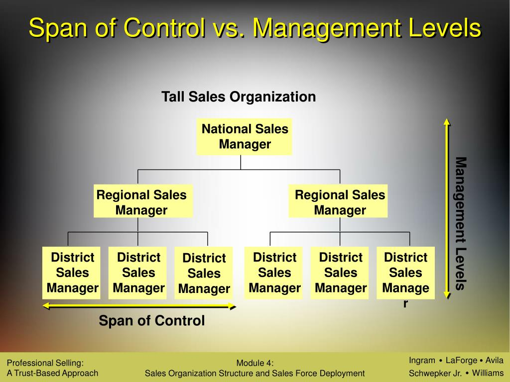 what is sales force organization