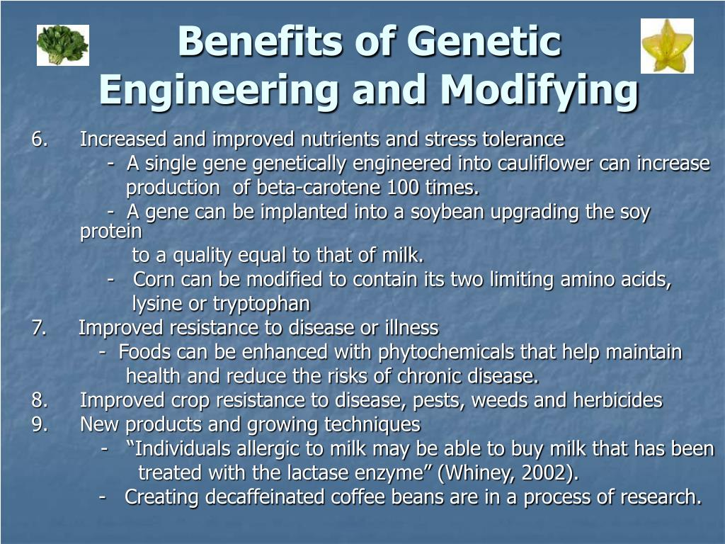 benefits and dangers of genetic engineering Almost 100% of gm crops on the market are genetically engineered with  herbicide tolerance  despite the claimed benefits over risks, and the wide  adoption of  genetic modification often adds or mixes proteins that were not  native to the.
