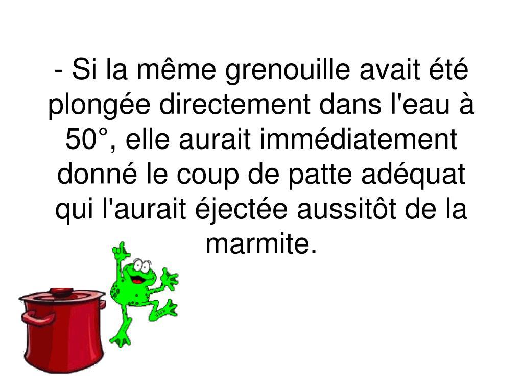 - Si la même grenouille avait été plongée directement dans l'eau à 50°, elle aurait immédiatement donné le coup de patte adéquat qui l'aurait éjectée aussitôt de la marmite.