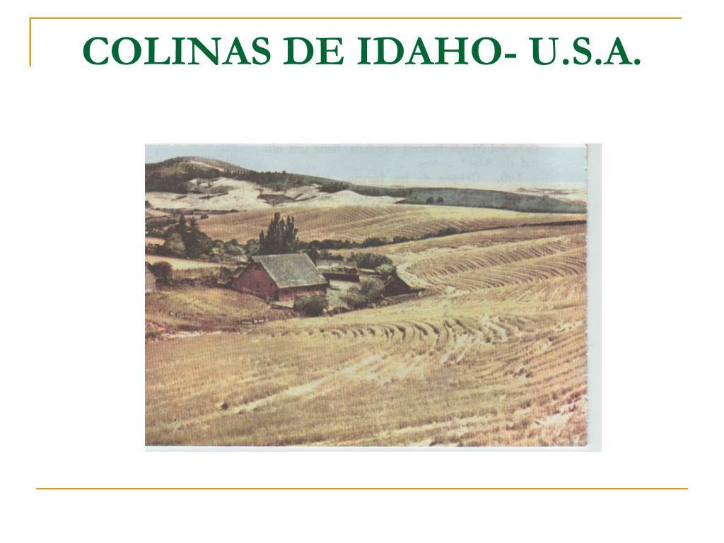 COLINAS DE IDAHO- U.S.A.