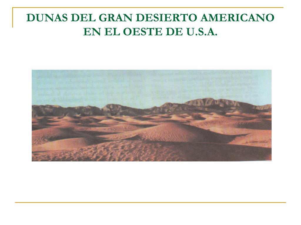 DUNAS DEL GRAN DESIERTO AMERICANO EN EL OESTE DE U.S.A.