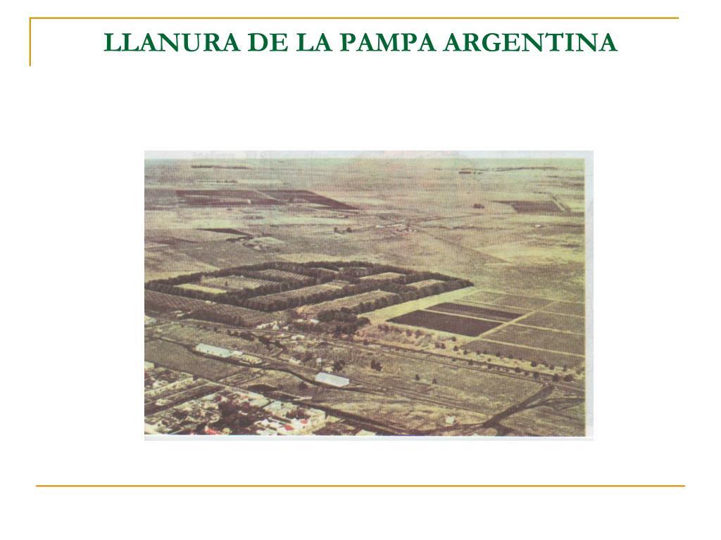 LLANURA DE LA PAMPA ARGENTINA