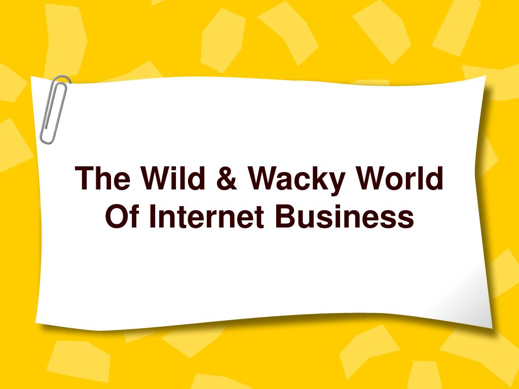 the wild wacky world of internet business
