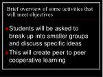 brief overview of some activities that will meet objectives7
