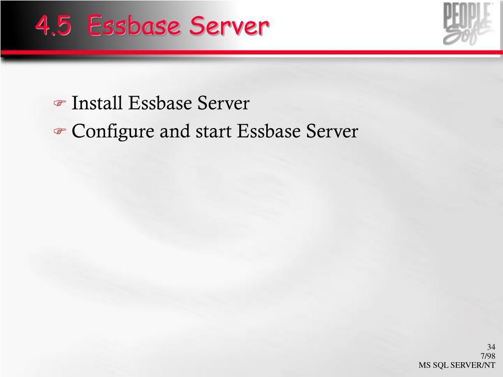 4.5  Essbase Server