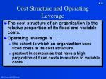 cost structure and operating leverage