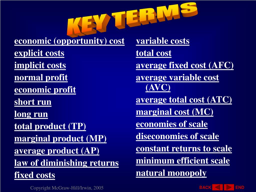 economic (opportunity) cost