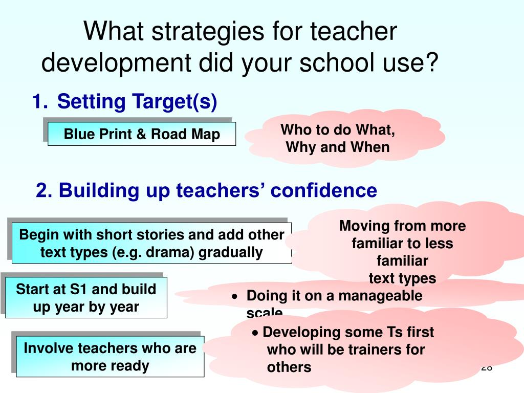 What strategies for teacher development did your school use?