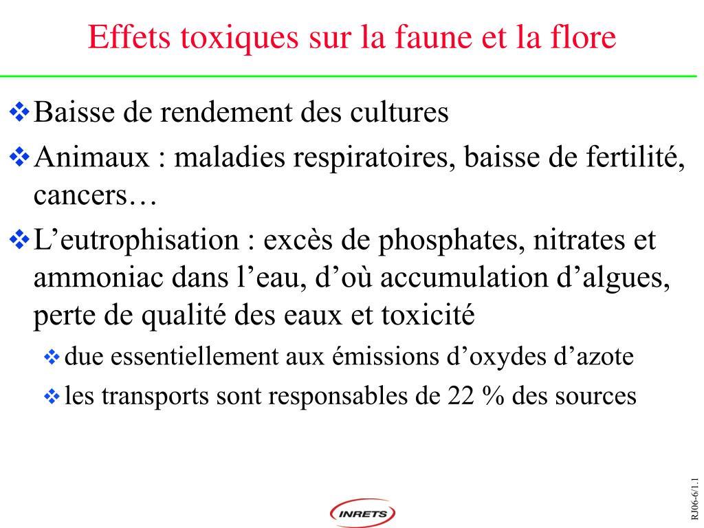 Effets toxiques sur la faune et la flore