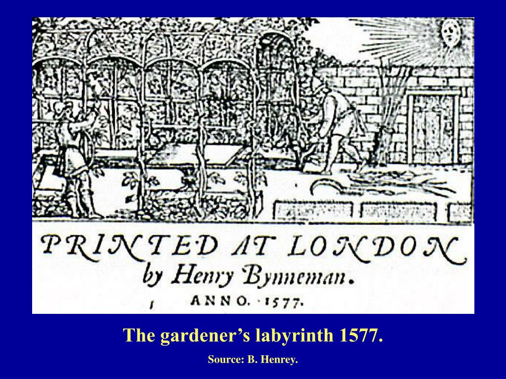 The gardener's labyrinth 1577.