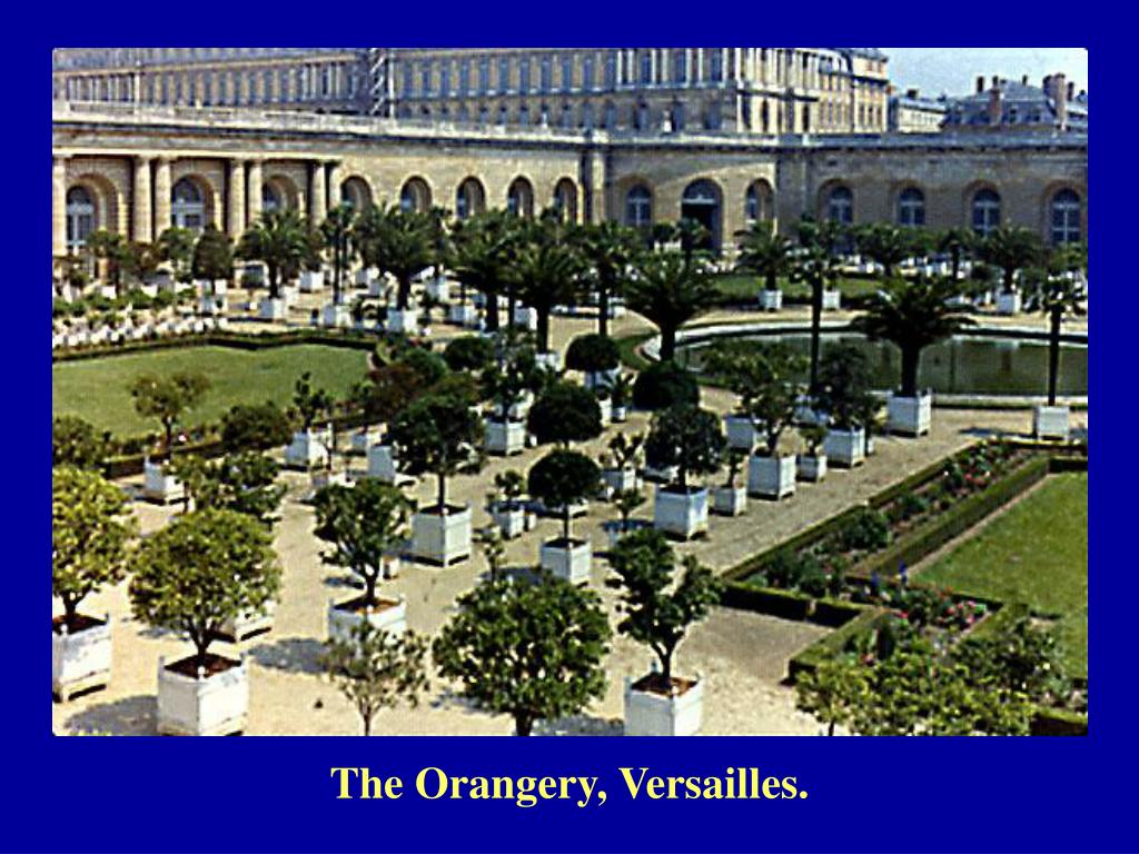 The Orangery, Versailles.