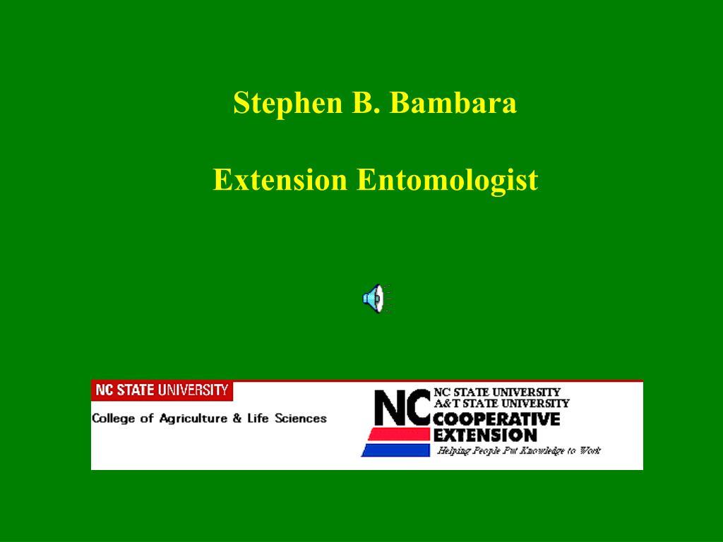 Stephen B. Bambara