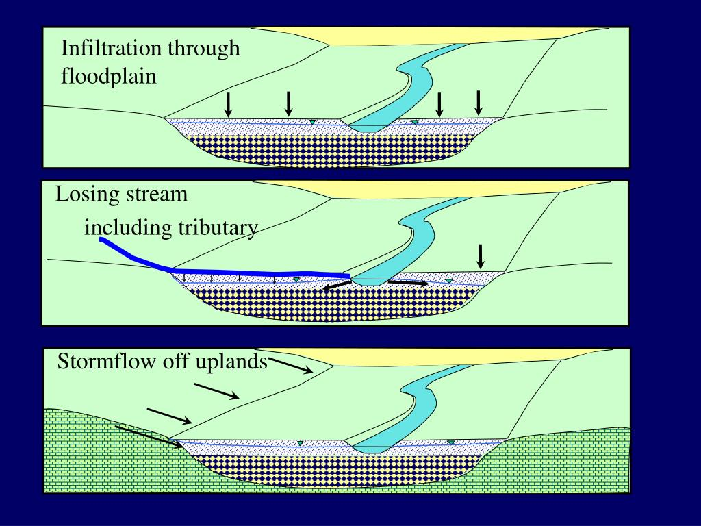 Infiltration through floodplain