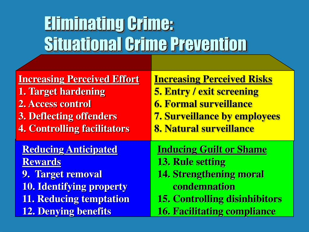 essay on situational crime prevention