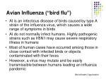 avian influenza bird flu