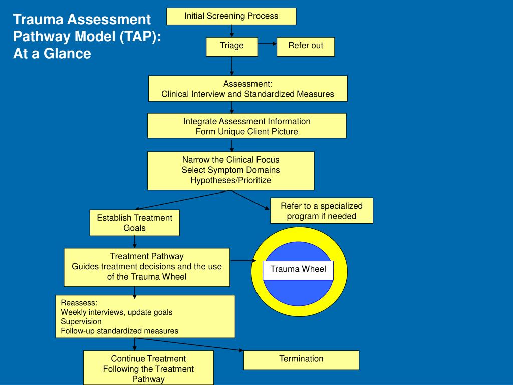 Trauma Assessment Pathway Model (TAP):  At a Glance