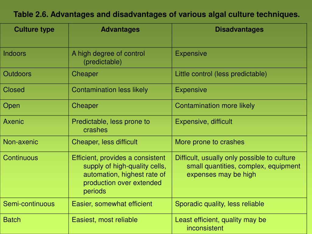 techniques advantages and disadvantages of investigating