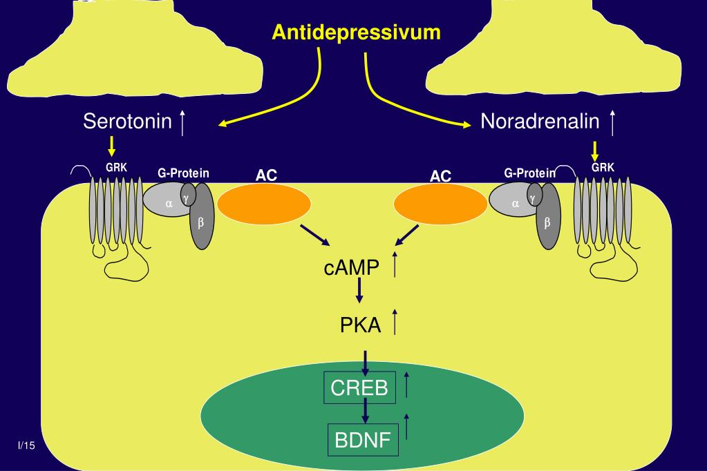 Antidepressivum
