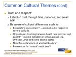 common cultural themes cont