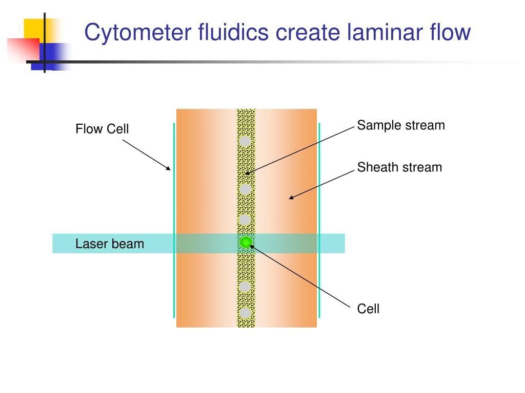 Flow Cytometry - Fisher Scientific