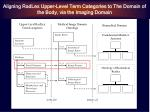 aligning radlex upper level term categories to the domain of the body via the imaging domain12