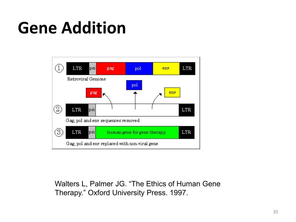 Gene Addition