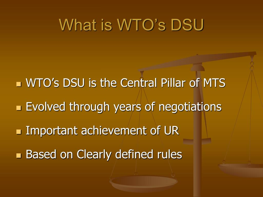 What is WTO's DSU