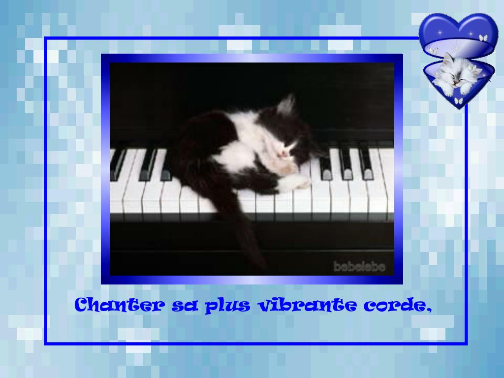 Chanter sa plus vibrante corde,