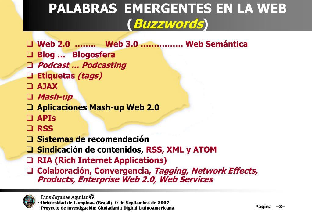 PALABRAS  EMERGENTES EN LA WEB (