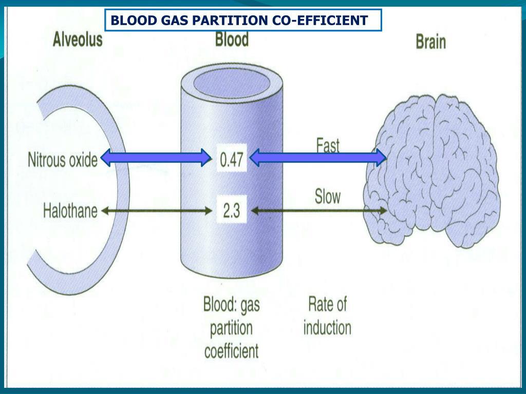 BLOOD GAS PARTITION CO-EFFICIENT