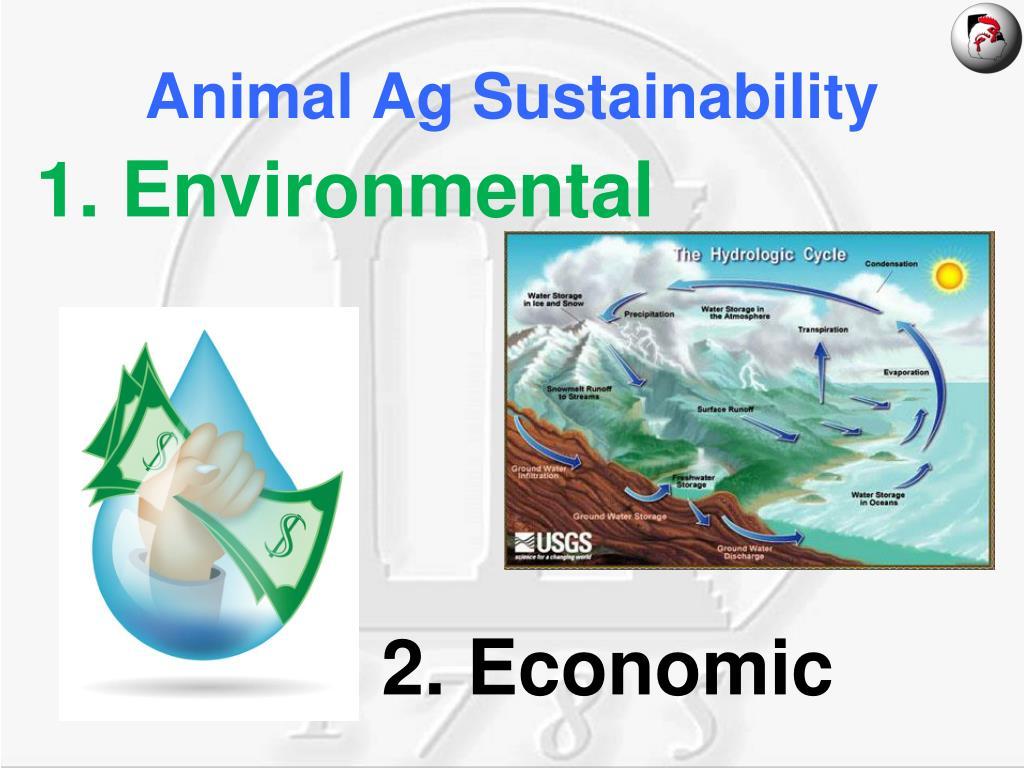 Animal Ag Sustainability