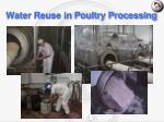water reuse in poultry processing