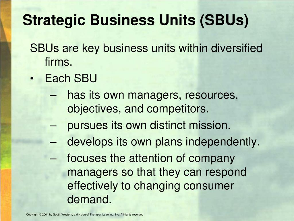 Strategic Business Units (SBUs)