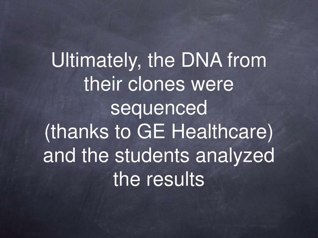 Ultimately, the DNA from their clones were sequenced