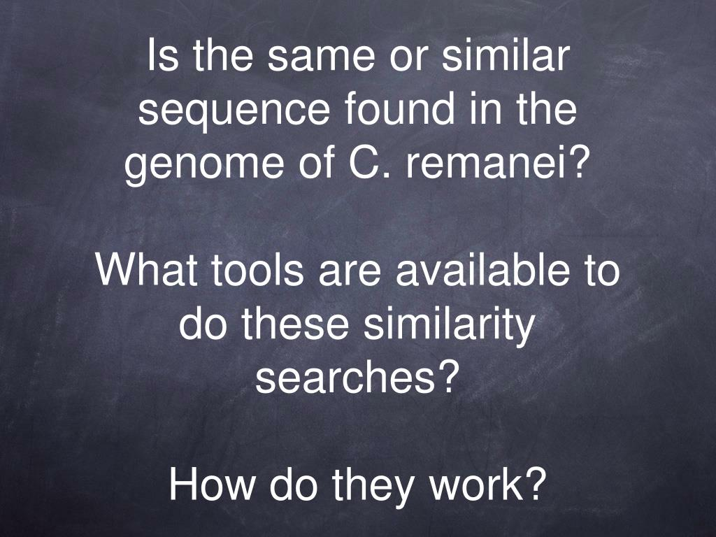 Is the same or similar sequence found in the genome of C. remanei?