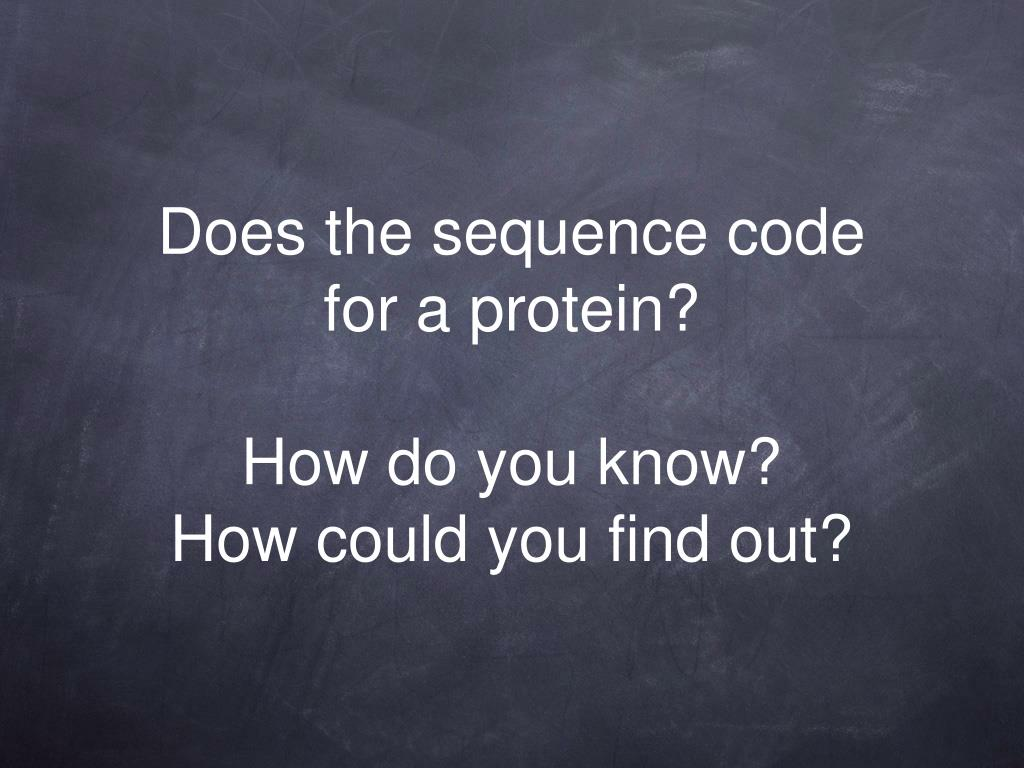 Does the sequence code for a protein?