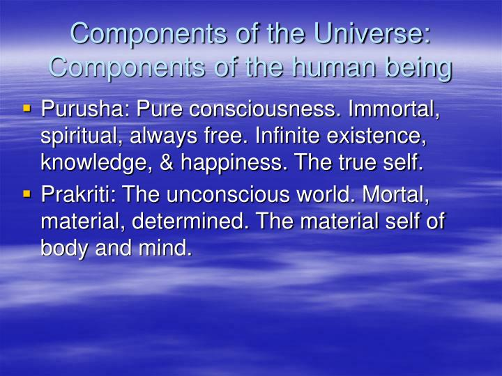 Components of the universe components of the human being