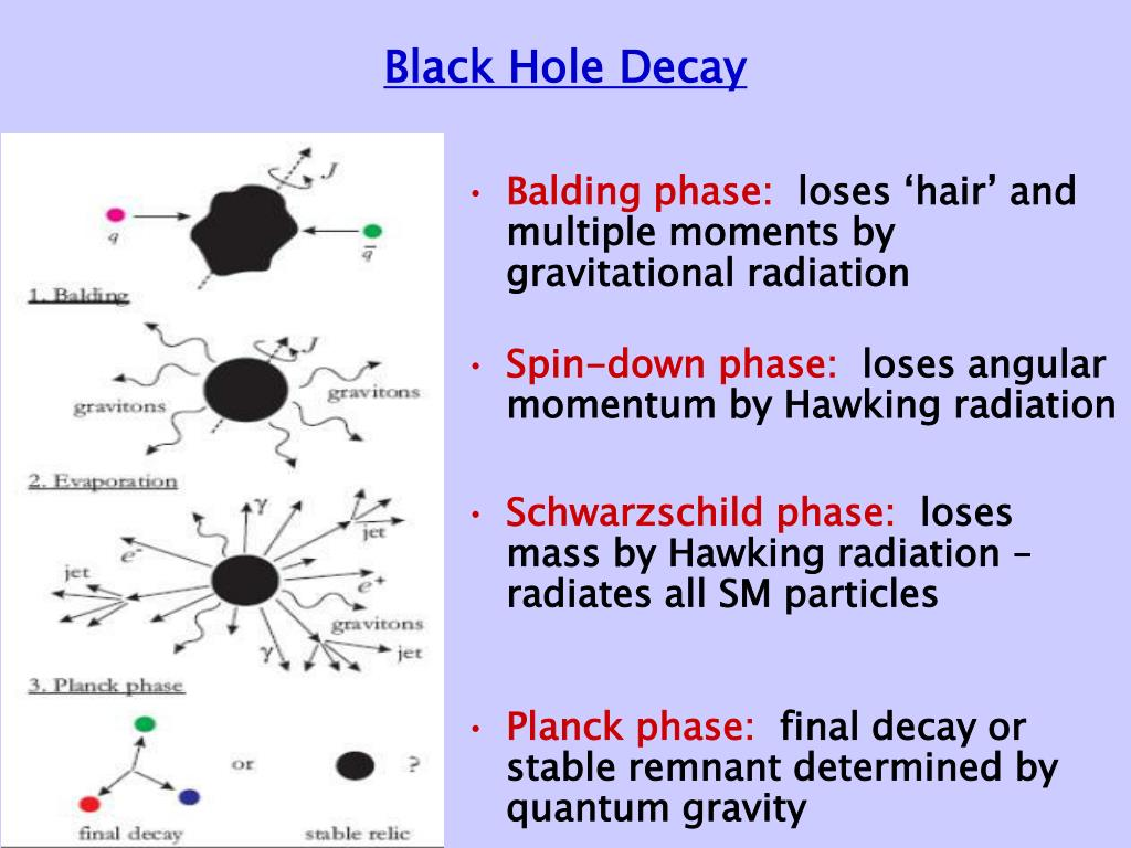 Black Hole Decay
