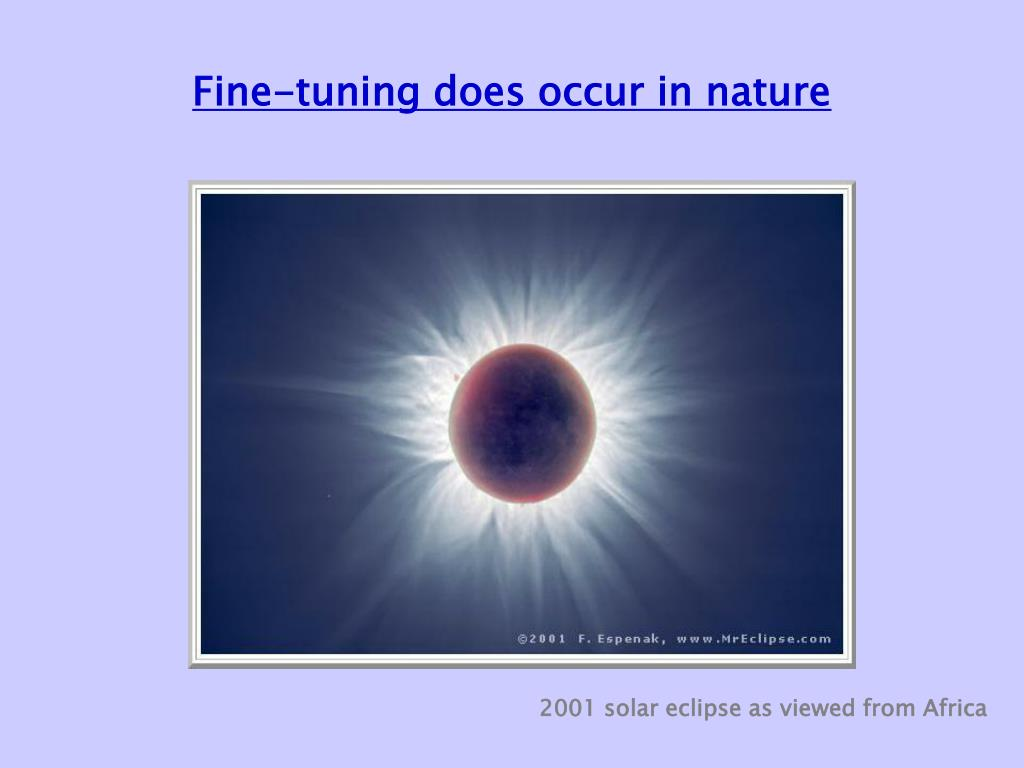 Fine-tuning does occur in nature