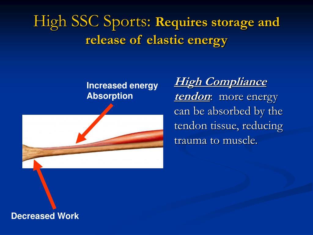 High SSC Sports: