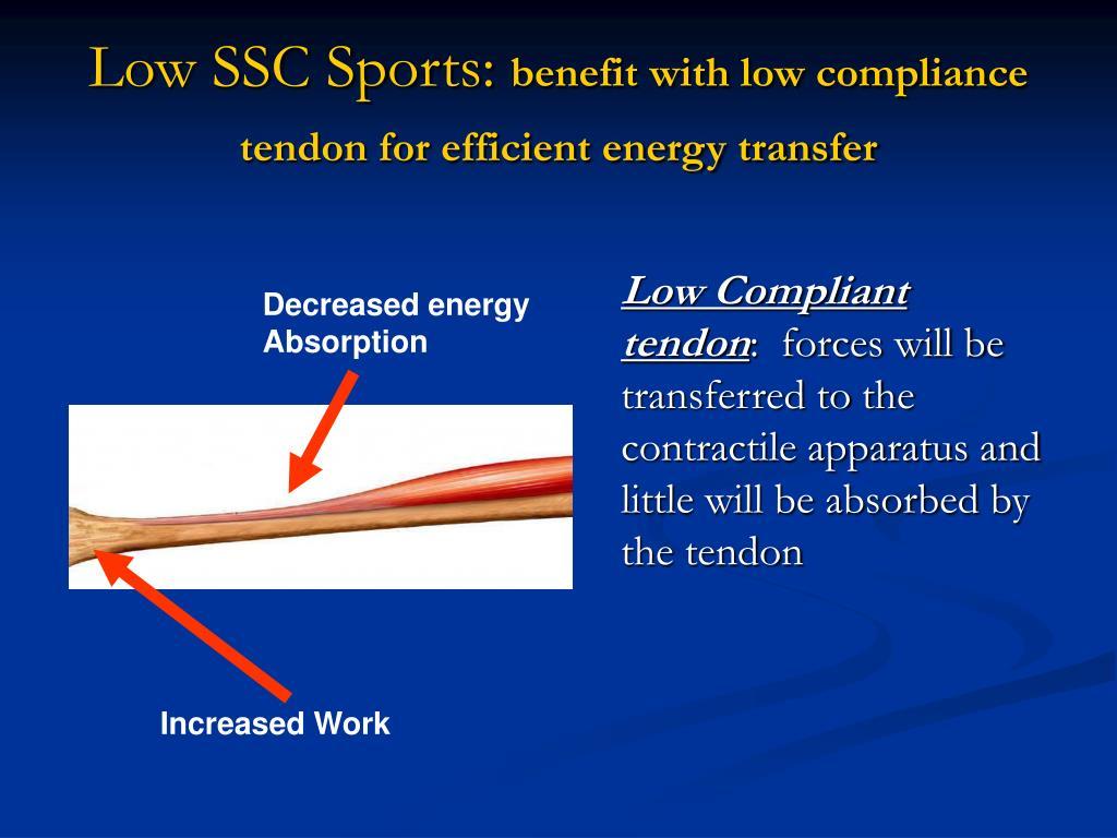 Low SSC Sports: