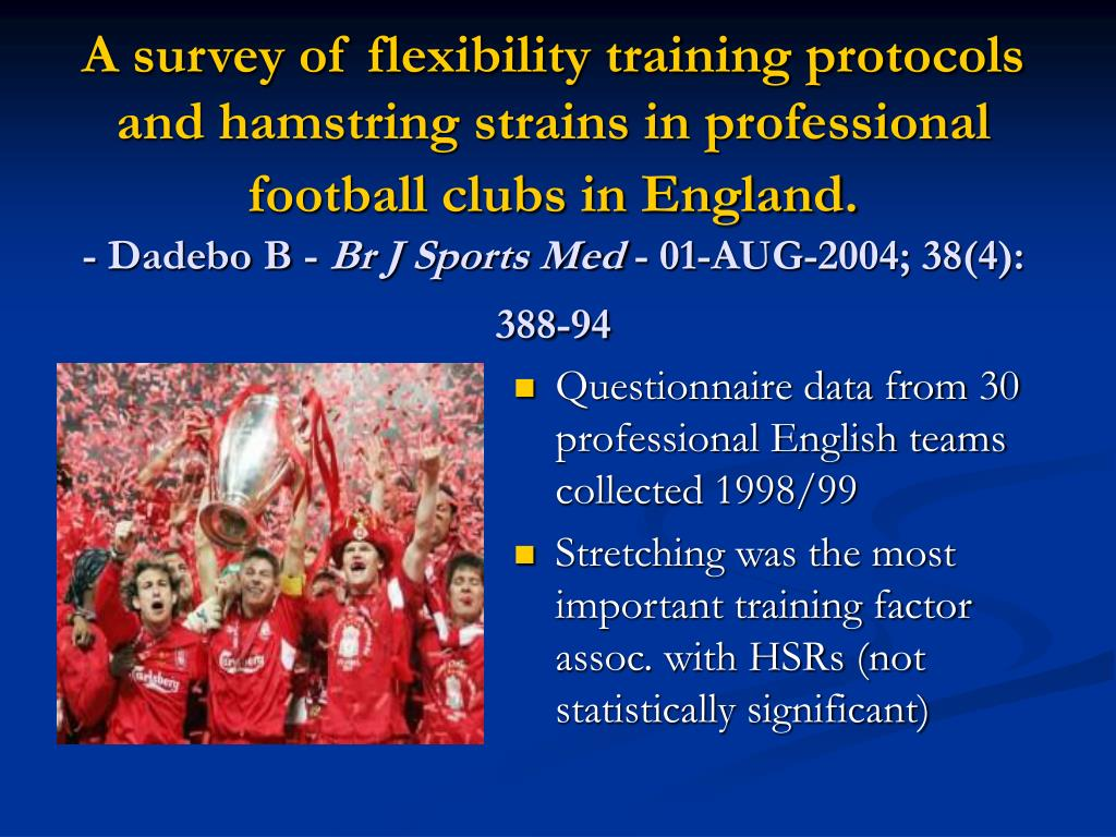 A survey of flexibility training protocols and hamstring strains in professional football clubs in England.