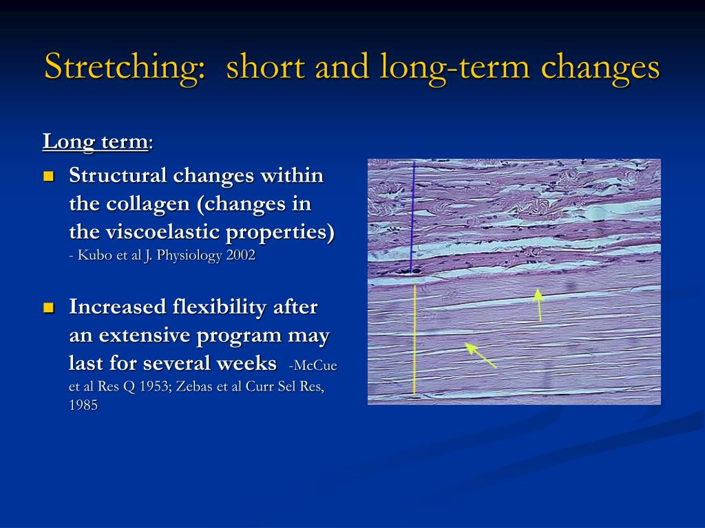 Stretching:  short and long-term changes