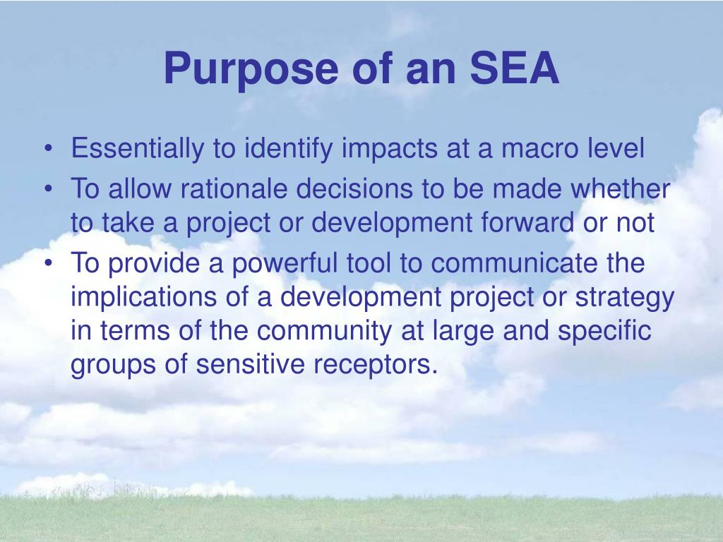 Purpose of an SEA