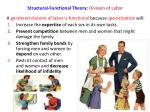 structural functional theory division of labor