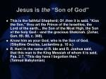jesus is the son of god17
